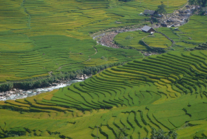 The Muong Hoa valley