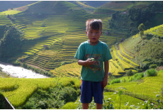 Mu Cang Chai child