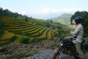 Terracing at Hoang Su Phi